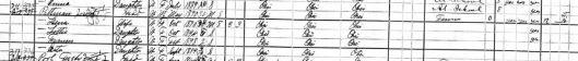 1900 Census Snip