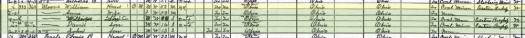 1920-Census-Salineville-Columbiana
