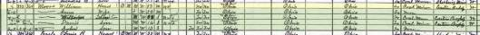 1920-Census-Salineville-Columbiana