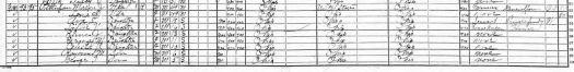 1920 Census Snip