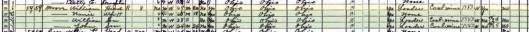 1930-Census-Salineville-Columbiana